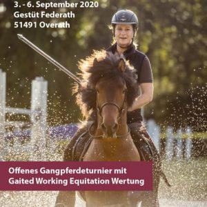 26. Internationale Deutsche Meisterschaft im Gangreiten