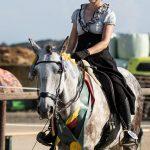 Gaited Working Equitation Wettbewerbe der 26. IDMG